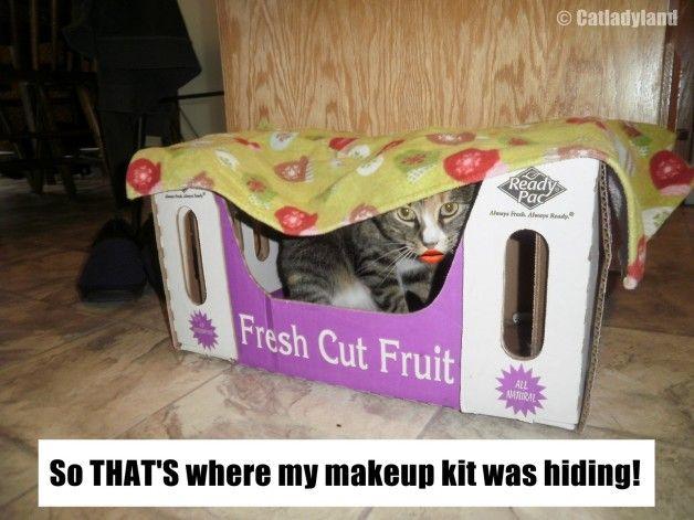 Den nysgjerrige tilfelle av manglende makeup!